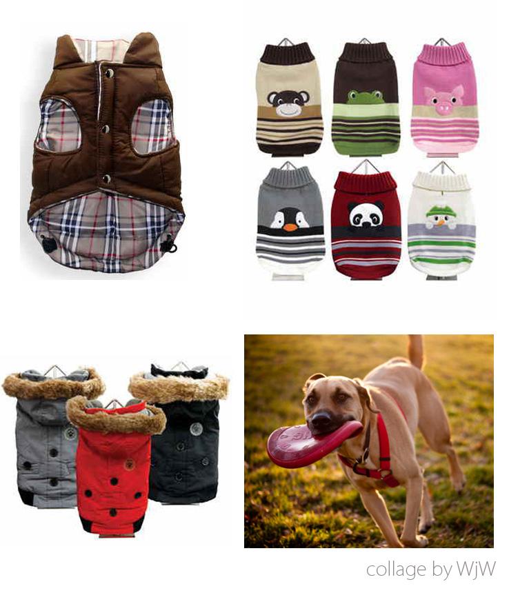 akcesoria dla psa i kota, kurtki dla psów