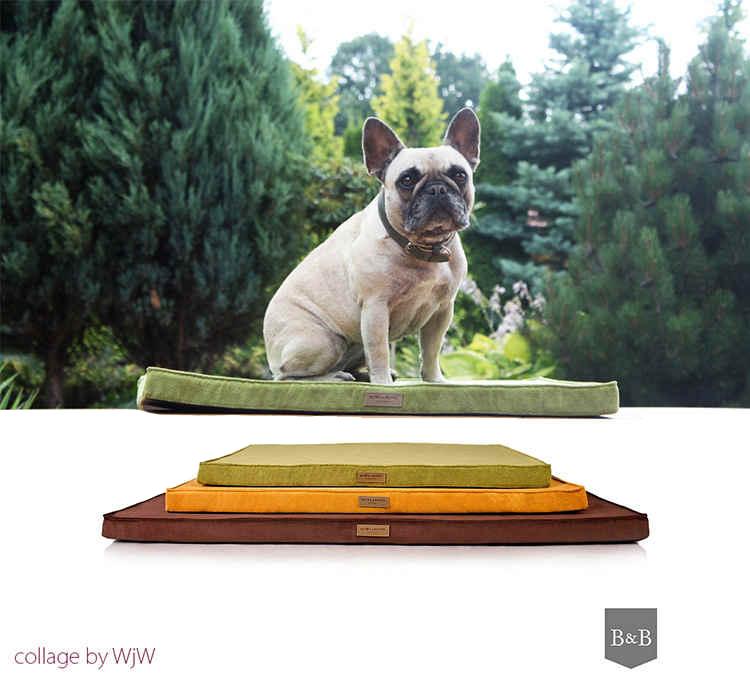 akcesoria dla psa i kota, mata ortopedyczna dla psa i kota