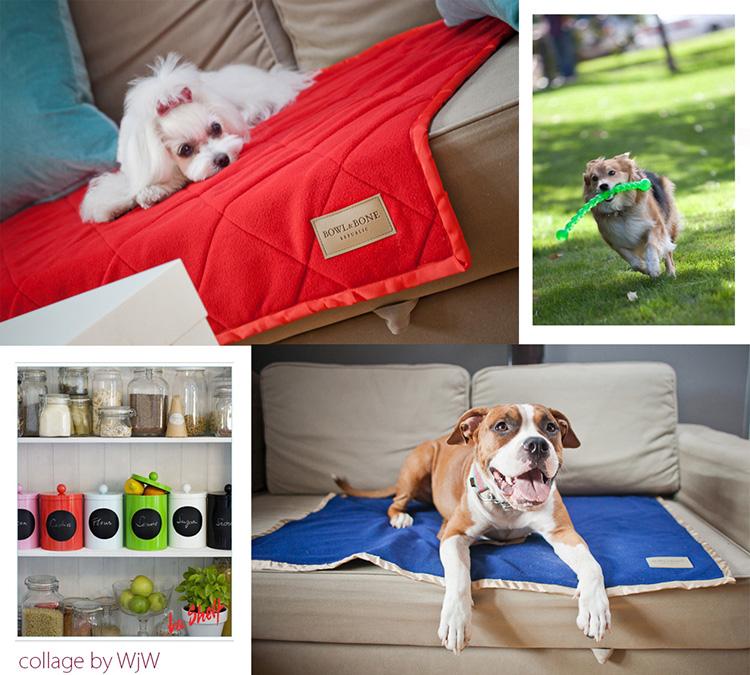 akcesoria dla psa i kota, kocyki dla zwierząt Bowl&Bone