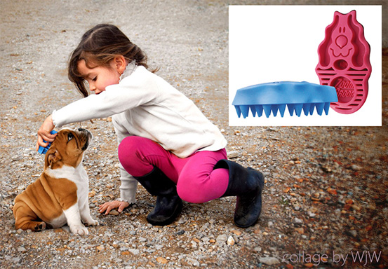 akcesoria dla psa i kota, szczotka dla psa kong