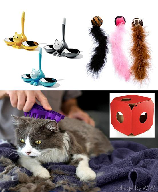 akcesoria dla psa i kota, akcesoria i zabawki dla kota