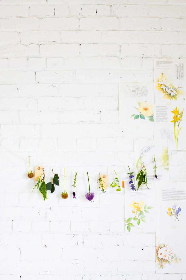 motyw zielnika we wnętrzach, motywy roślinne we wnętrzach