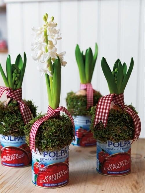 dekoracja wnętrz kwiatami, dekoracja wnętrz hiacyntem, dekoracja z hiacyntu na Wielkanoc, hiacynt w puszce
